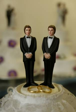 to answer the desire of the homosexual couples to benefit from guaranteed notably economic similar to those of the married couples the french legislator - Figurine Mariage Gay